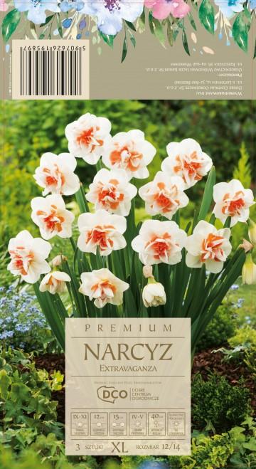 NARCISSUS EXTRAVAGANZA 3 szt. DCO (NARCYZ)