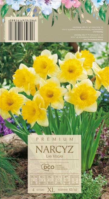 NARCISSUS LAS VEGAS 4 szt. DCO (NARCYZ)