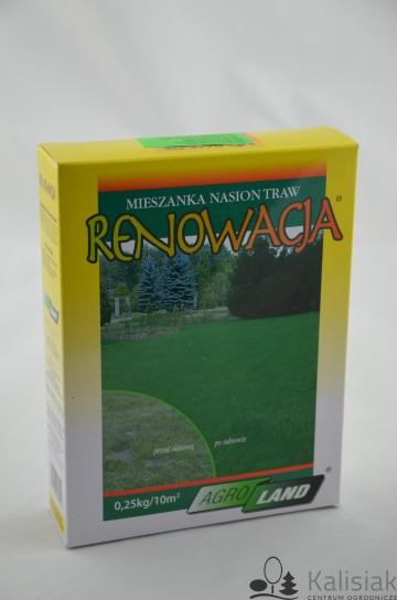 TRAWA RENOWACJA 0,25 KG