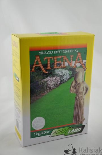 TRAWA ATENA 1 KG